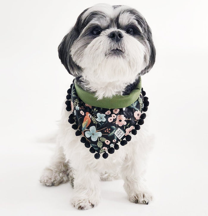 OH HONEY BEAR | Paradise Pom Pom Bandana