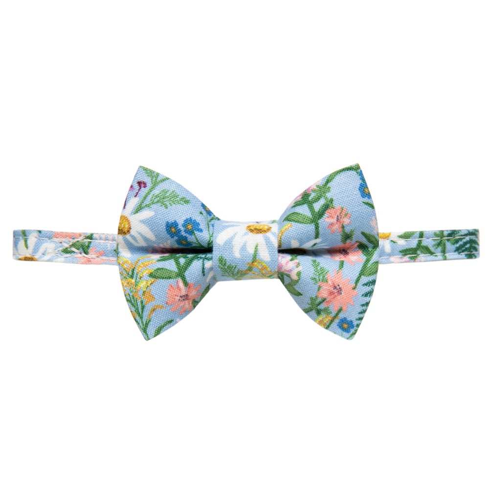 The Oopsie Daisy Cat Collar & Bow Tie Set