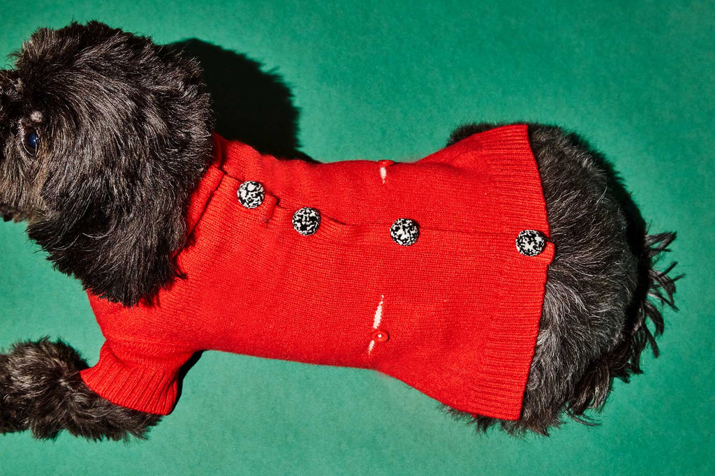 WARE OF THE DOG | Pom Pom Cardigan in Red
