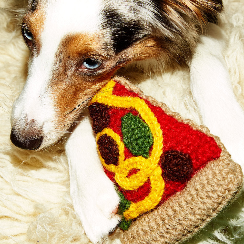 WARE of the DOG | Hand Knit Pizza