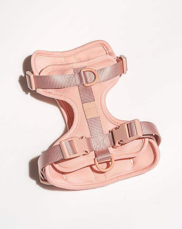 Cushioned Dog Harness in Blush