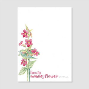 162 Lewis monkey flower notepaper