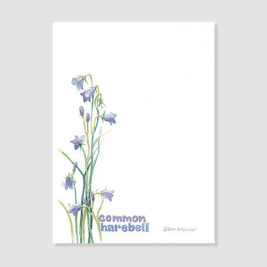 163 common harebell notepaper