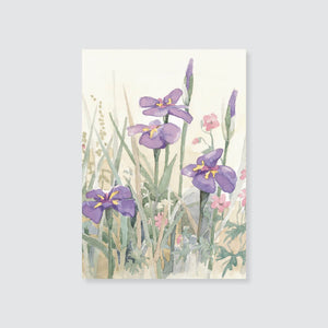 122GE Japanese iris gift enclosure