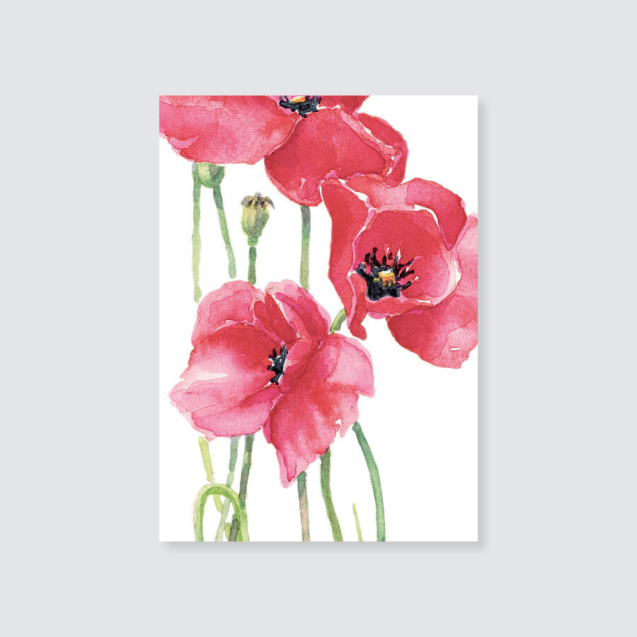 182GE red poppy gift enclosure