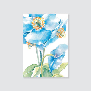 185GE blue poppy gift enclosure