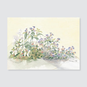101 wild ageratum note card / mini-note card