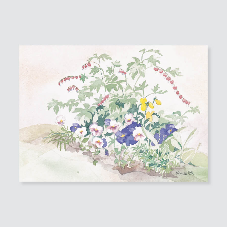 102 bleeding heart pansies note card / mini-note card