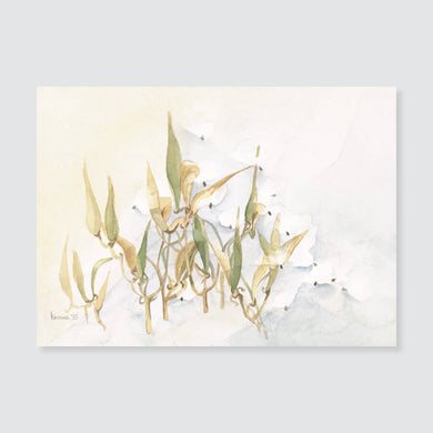 108 butterfly weed note card / mini-note card