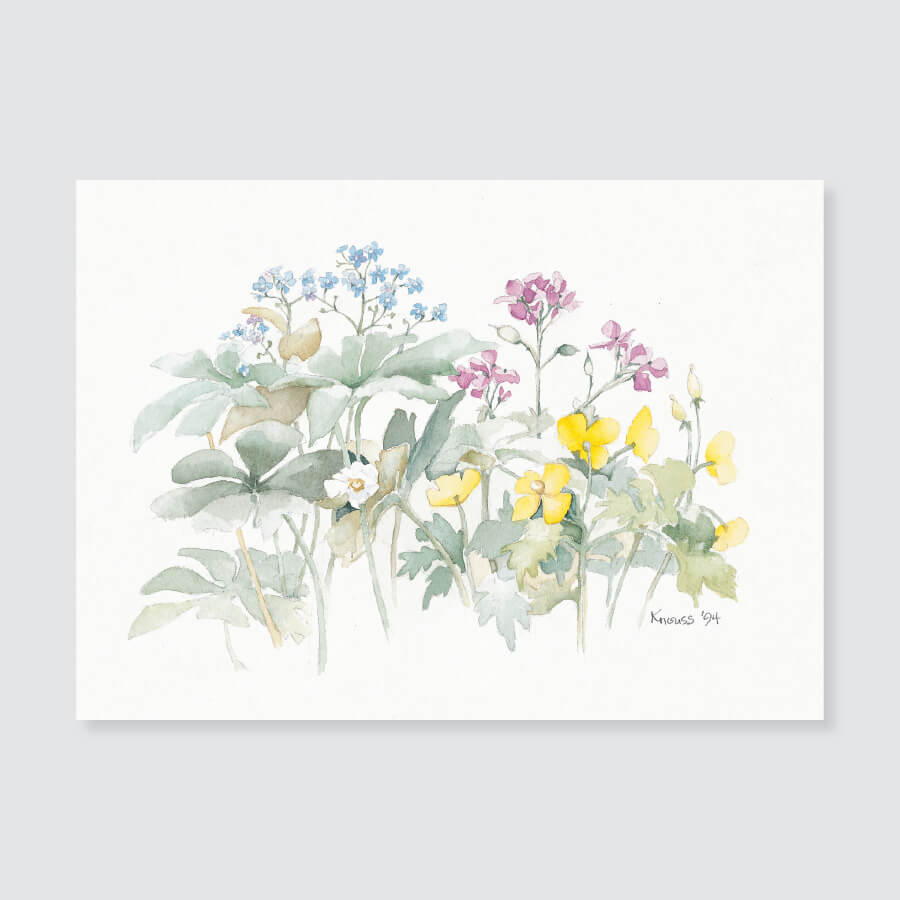 119 mayapple note card / mini-note card