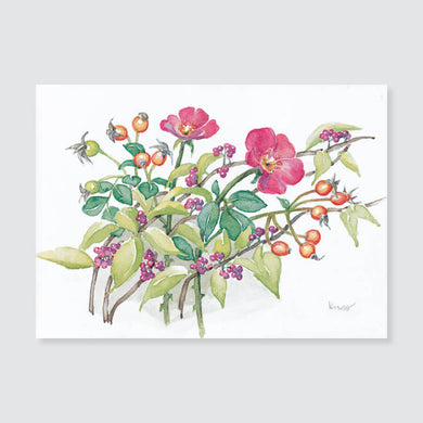 146 shrub rose with hips note card / mini-note card