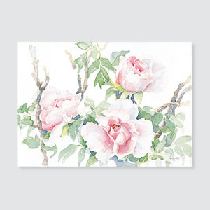 155 peony note card / mini-note card