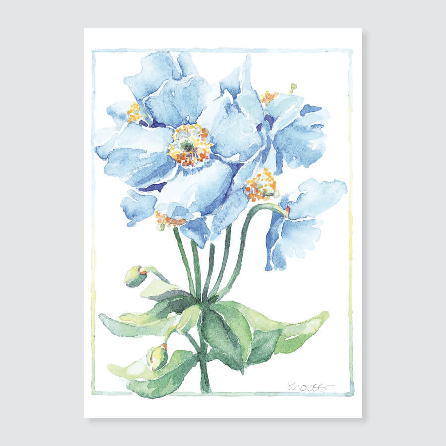 175 blue poppy note card