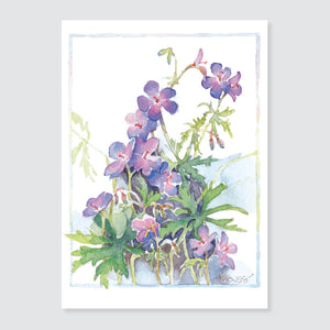 178 hardy geranium note card