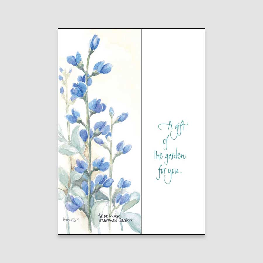 133BC Indigo birthday card