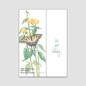 140BC Swallowtail birthday card