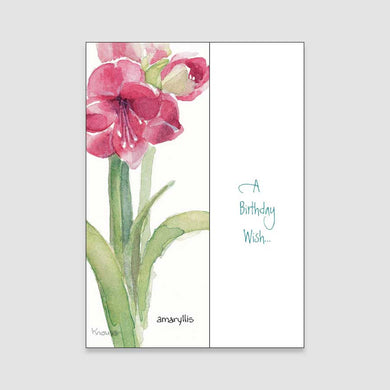 152BC Amaryllis birthday card