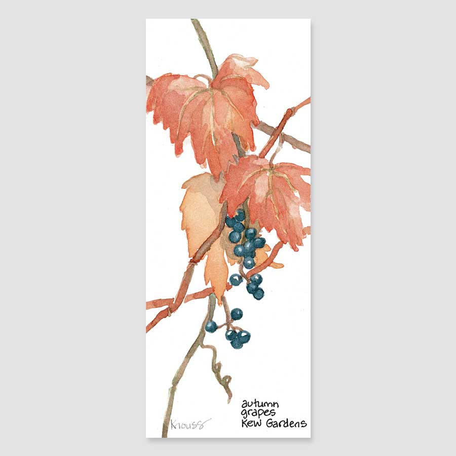 143B Kew grapes bookmark