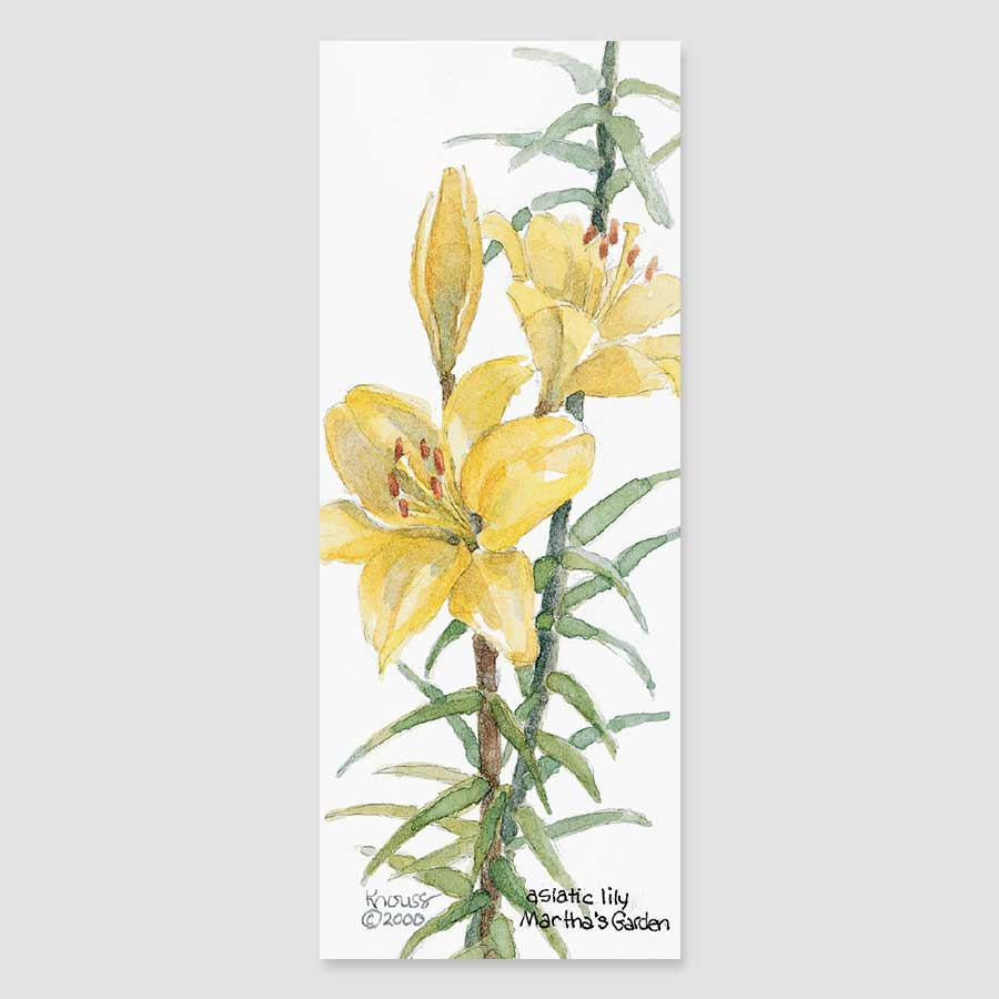 149B Asiatic lily bookmark