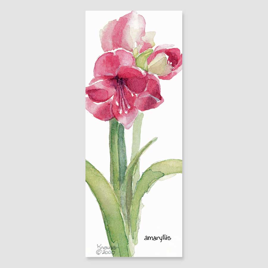 152B amaryllis bookmark