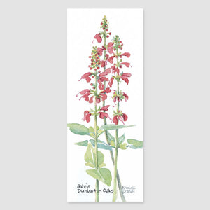 159B salvia bookmark