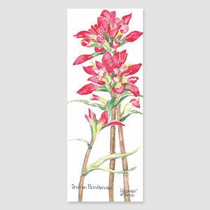 195B Indian paintbrush bookmark