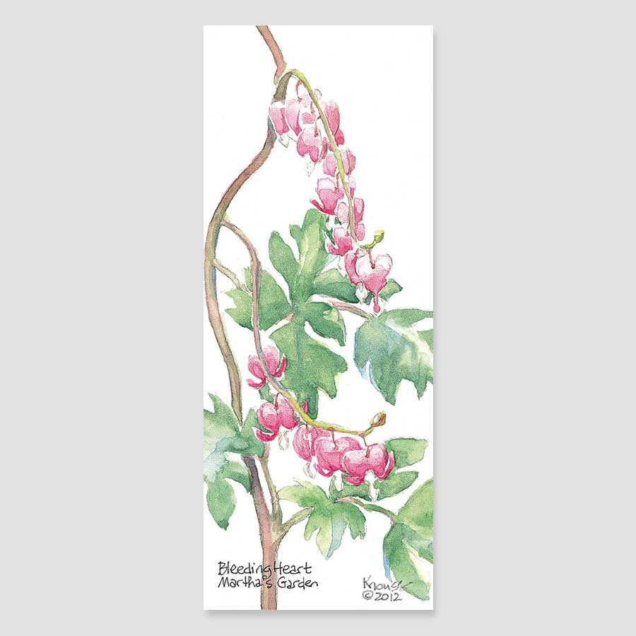 197B bleeding heart bookmark