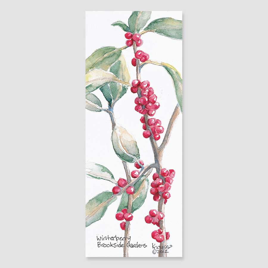 198B winterberry bookmark