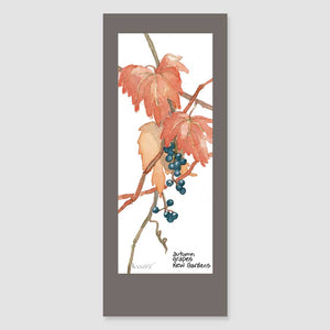 143BMC Kew grapes bookmark card