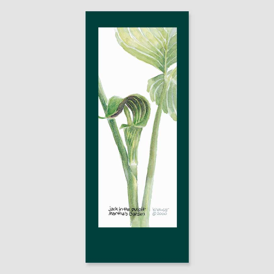 150BMC Jack-in-the-Pulpit bookmark card