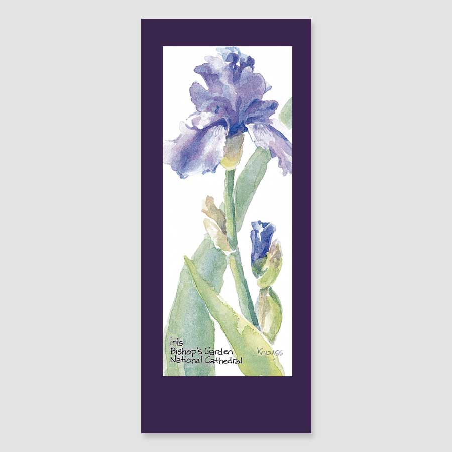 158BMC iris bookmark card
