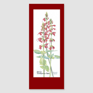 159BMC salvia bookmark card