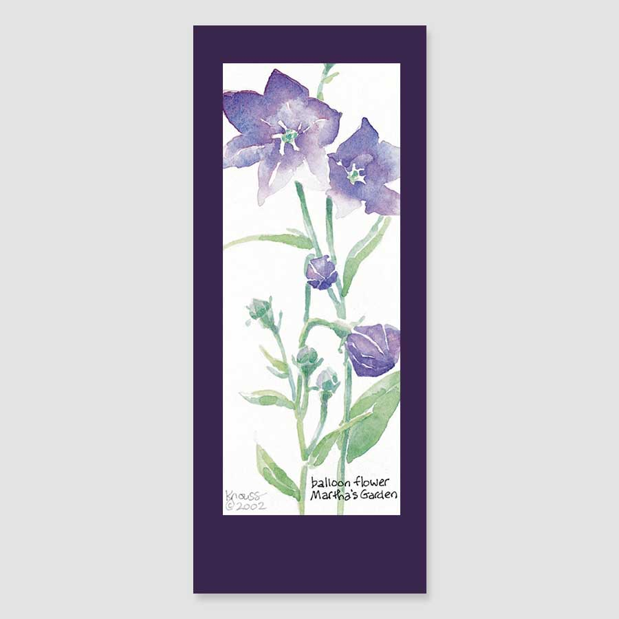 170BMC balloon flower bookmark card