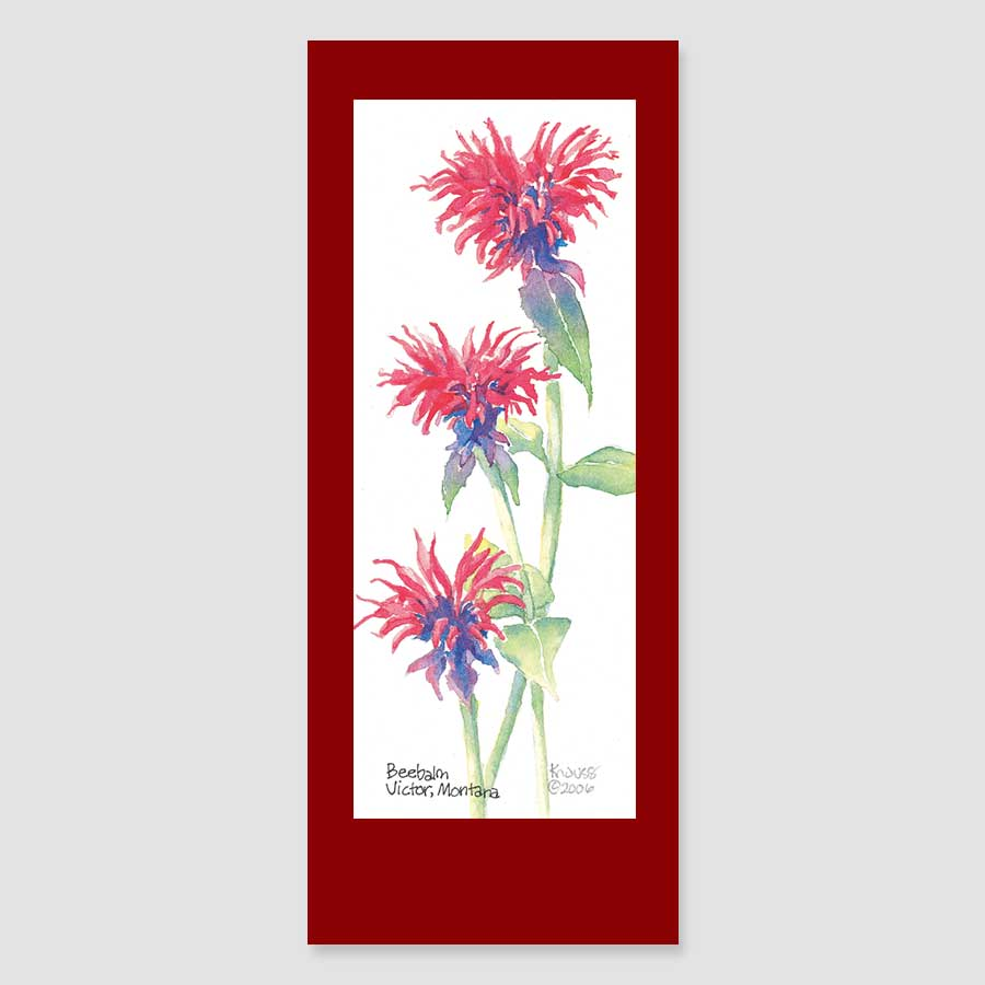 190BMC beebalm bookmark card