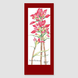 195BMC Indian paintbrush bookmark card