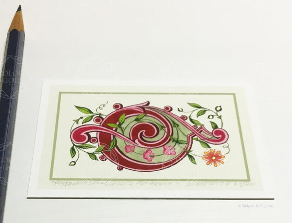 "Framed red & green illumination with 24 kt gold gilding, ""Peppermint Spiral"" 2"" x3"" - Color & Gold LLC © Bridgette Kelling"