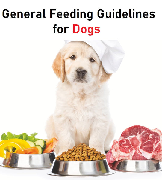 (Dog Fresh Food) Nutrition - General Feeding Guidelines for Dogs