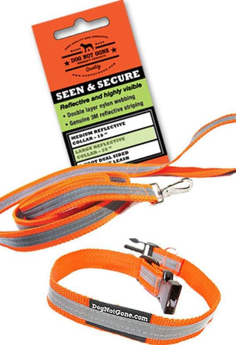 Dog Not Gone - Reflective Leash