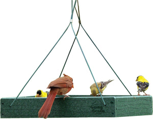 Audubon/woodlink - Going Green Hanging Platform Feeder