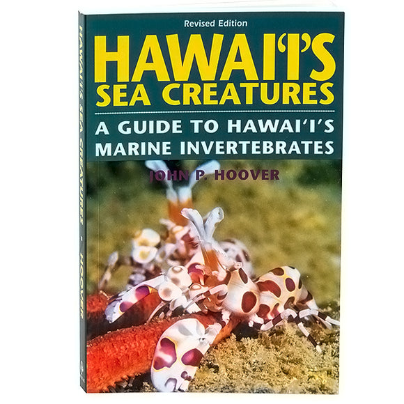 Hawaii's Sea Creatures