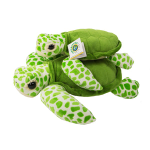 Green Sea Turtle (Honu)