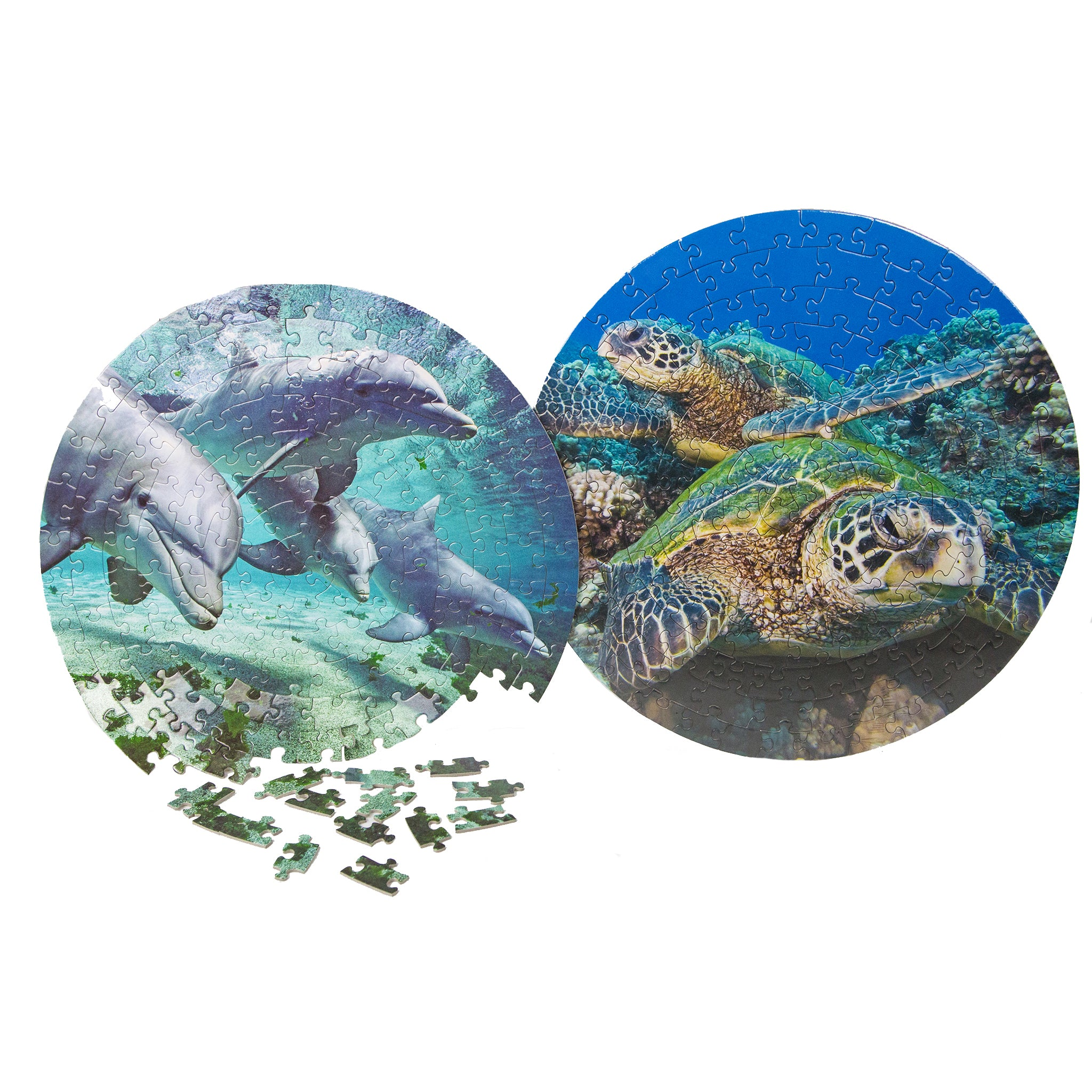 puzzle a round pacwhale ocean store