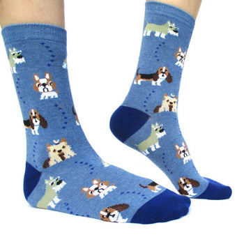 French Bulldog Cesky Yorkshire Terrier Basset Hound Novelty Dog Print Socks for Women in Blue | DOTOLY