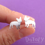 French Bulldog with Rhinestone Collar Shaped Stud Earrings in Silver