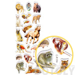 Horses Monkey Racoon Lion Dog Shaped Mixed Animal Themed Photo Stickers | DOTOLY