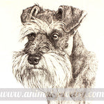 Miniature Schnauzer Realistic Animal Pet Dog Print Tote Bag | 100% Natural Cotton | DOTOLY