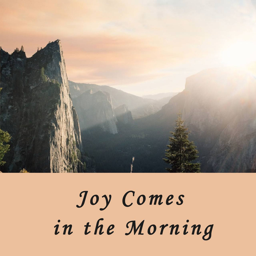 Joy Comes in the Morning (written by Lindsey Dennis) - Dennis Family Post 5