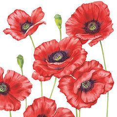 5 Napkins Poppies 33 x 33 cm Tissue Decoupage Paper Party Craft - Hobby & Crafts