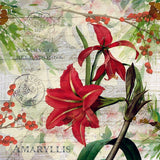 5 Napkins Red Amaryllis 33 x 33 cm Tissue Decoupage Paper Party Craft - Hobby & Crafts