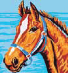 Collection d'Art Printed Needlepoint Tapestry Canvas Kit Needlecraft 20x20cm - Horse's Head
